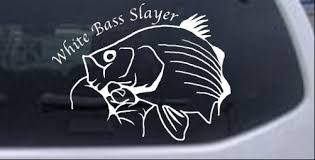 White Bass Slayer Fishing Decal Car Or Truck Window Decal Sticker Rad Dezigns