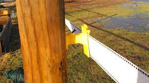 Choosing Electric Fencing For Horses Countryside