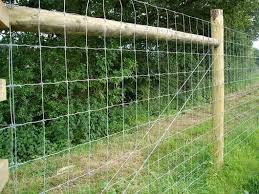 12 5 Gauge Fixed Knot Fence Tridentcorp