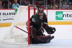 GLENDALE, ARIZONA - DECEMBER 08: Goaltender Adin Hill #31 of the Arizona  Coyotes in action during the second period of t… | Arizona coyotes, San  jose sharks, Coyote
