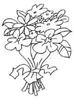 Bloemen En Planten Kleurplaten Voor Volwassenen