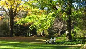 bartlett arboretum gardens marcia