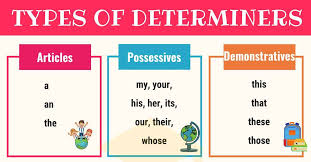 determiner definition types list and