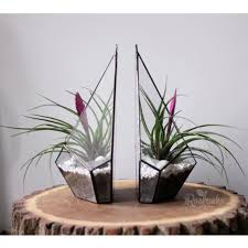 set of 2 wall hanging planter boxes