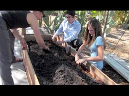 the best soil for a vegetable garden at