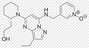Delavirdine Pharmaceutical drug Therapy Management of HIV/AIDS Reverse transcriptase, others free png | PNGFuel