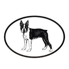 Dog Breed Oval Vinyl Car Decal Black White Sticker Boston Terrier On Ebid United States 173373205
