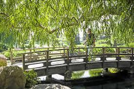 the anese garden in van nuys