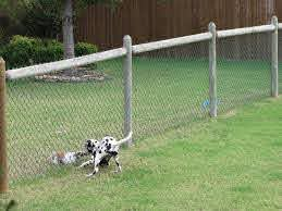 Keeping My Cents September 2010 Temporary Fence For Dogs Dog Fence Backyard Fences