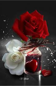 ممول رسمي مخرج احذية رياضية أجمل الورود Taskinlardogaldepo Com