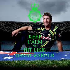 david warner star batsman for australia