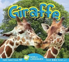 Giraffe by Aaron Carr, Hardcover | Barnes & Noble®