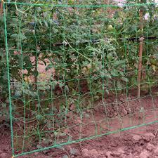 1pc Vegetable Plant Vine Fence Flower Climbing Vine Mesh Plant Support Frame Plant Growth Trellis Netting Garden Fence Fencing Trellis Gates Aliexpress