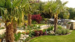 patios and tropical planting surrey