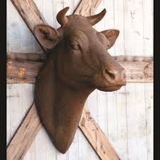 big brown wall mount cow head