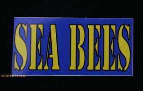 Navy Seabees 13 Inch Window Strip Navy Outside Decal Sticker Official Usa Made