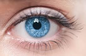 عيون زرقاء احلي عيون ملونة زرقاء مساء الورد