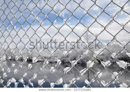 Chicken Wire Fence Snow Near River Stock Photo Edit Now 1577151481