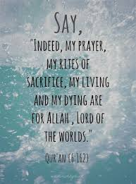 islam truth quotes