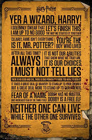 com harry potter quotes poster one size multicolored
