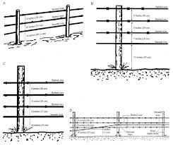 Specifications For A 3 Strand Karsky 1988 And B Suggested Download Scientific Diagram