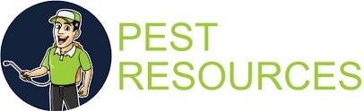 Get Pet Friendly Ant Killer Images