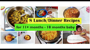 8 lunch dinner recipes for 11 months