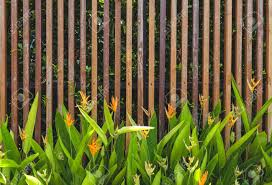 Wooden Fence Design And Green Garden Background Stock Photo Picture And Royalty Free Image Image 41823610