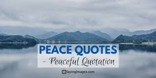 peace quotes peaceful quotation word porn quotes love quotes