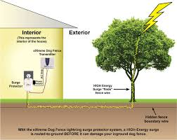 Extreme Dog Fence Lightning Surge Protector Protect Your Dog Fence