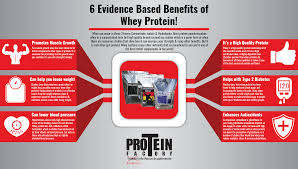 whey protein infographic proteinfactory