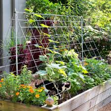 Use Cattle Panels As A Trellis 3 Ways To Use Cattle Panel Fencing