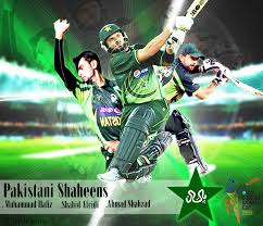 stan cricket team
