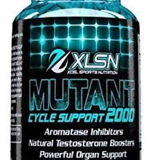 xcel sports nutrition order xcel