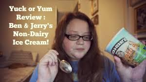 ben jerry s non dairy ice cream