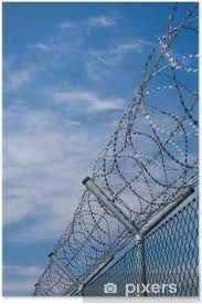 Security Fence With Barbed Wire Poster Pixers We Live To Change
