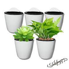 flower pots water hanging plants pot