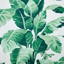 nathan turner pacifico palm wallpaper