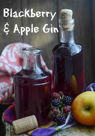 fruit infused gin recipe