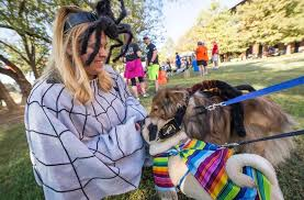 Dog About Town Trotting Out Your Costume And More Pooch Friendly Things To Do