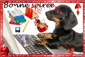 BONNE SOIRÉE À VOUS TOUS (VIVE L`HUMOUR À TOUS!)...!!!! * - PicMix