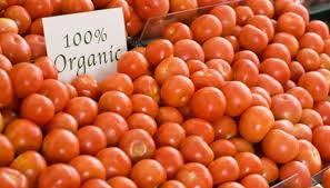 non toxic pesticides for tomato plants