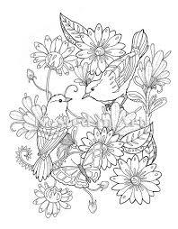 Volwassen Kleurplaat 2 Vogels En Vlinder Floral Design Etsy