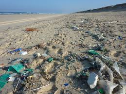 Αποτέλεσμα εικόνας για σκουπίδια στη θάλασσα