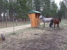 Automatic Hay Feeder Installed In Horse Pasture Fence Youtube