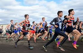 Top 2019 boys cross country times in Michigan as of Sep. 4 - mlive.com