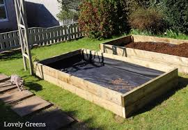 building raised garden beds sizes the