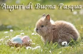 Auguri di Pasqua semplici: frasi brevi, immagini di conigli e uova