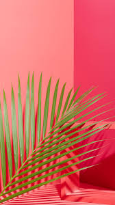 77 pink phone wallpapers on wallpaperplay