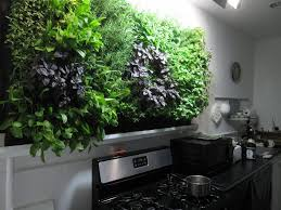 hydroponic herb wall is in with